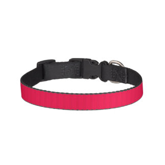 red rose pet collar