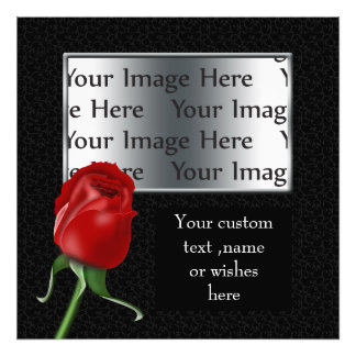 red rose photo template