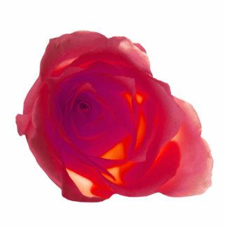 Red Rose Photo Sculpture Keychain