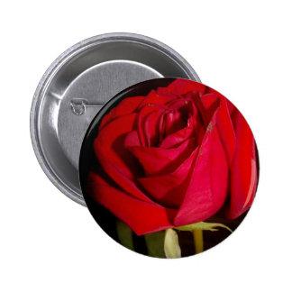 Red Rose Pinback Button