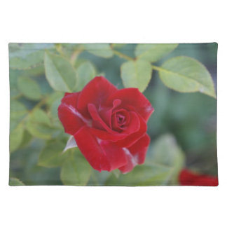 Red Rose Placemat Cloth Placemat