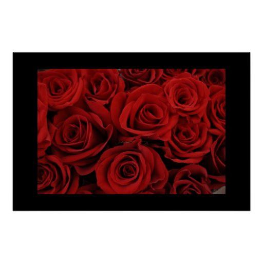 Red Rose Poster Valentine's Day Gift