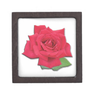 Red Rose Premium Gift Box