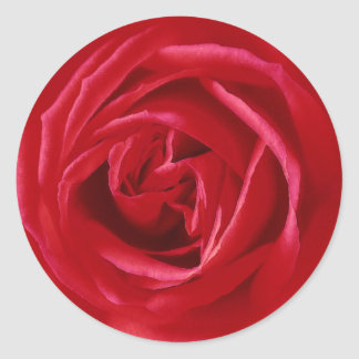 Red rose print classic round sticker