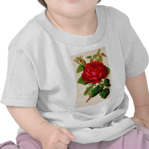 Red Rose Shirts
