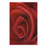 Red Rose Stationary Customized Stationery