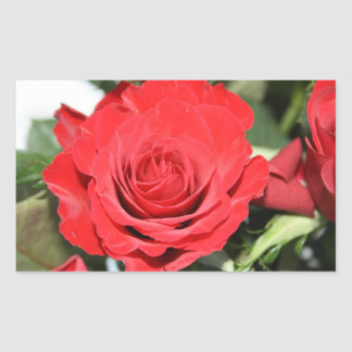 Red rose stickers