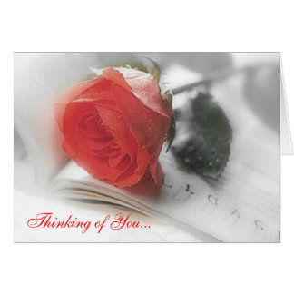 Red Rose - Thinking of You Card