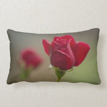 Red Rose Throw Pillows