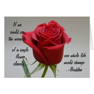 Red Rose Valentine-with Buddha quote Greeting Card