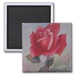 Red rose  Valentine's Day Magnet