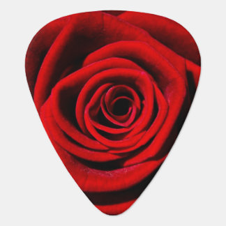 Red Rose Vines Flowers Blossoms Love Peace Art Guitar Pick