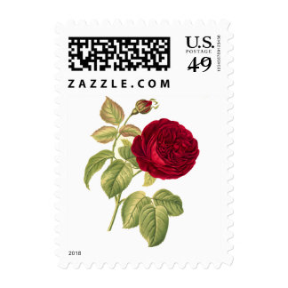 Red Rose Vintage Botanical Postage Stamp