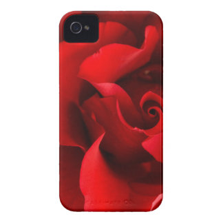 Red Rose w Dew Drop on White Template- Customized iPhone 4 Case