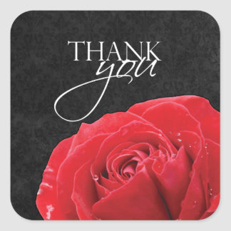 Red Rose & Water Droplets   Square Thank You Square Sticker
