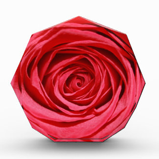 Red Rose Wedding Flowers Glossy Floral Patterns Acrylic Award