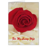 Red Rose Wife Anniversary Card