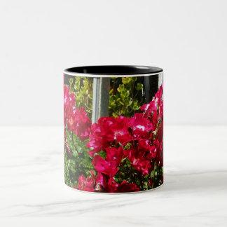 """Red Rose Window"" Mug"