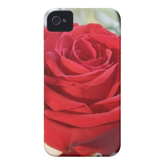 Red Rose with Garden Background iPhone 4 Case