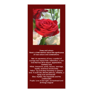 Red Rose with Garden Background Rack Card