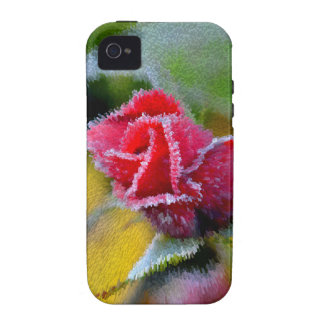 red rose with hoarfrost in the garden, close-up, vibe iPhone 4 case