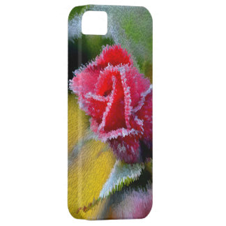 red rose with hoarfrost in the garden, close-up, iPhone 5 cases