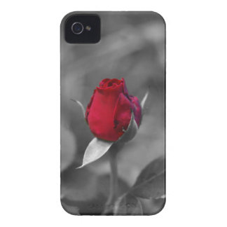 Red Rosebud blackberry bold case