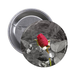 Red Rosebud on Grey 2 Inch Round Button