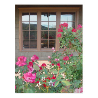 Red Roses and a reflection of the Mts. in windows Postcard