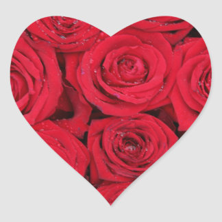 Red roses by Therosegarden Heart Sticker