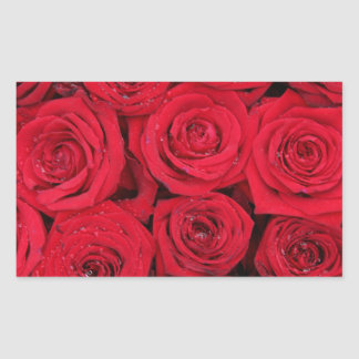 Red roses by Therosegarden Rectangular Sticker