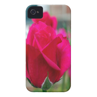 Red roses Case-Mate iPhone 4 case