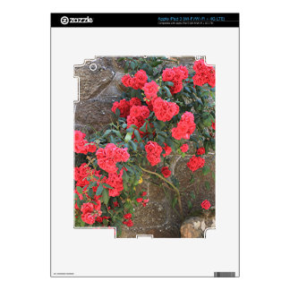Red roses climbing on brick wall, Spain iPad 3 Decals