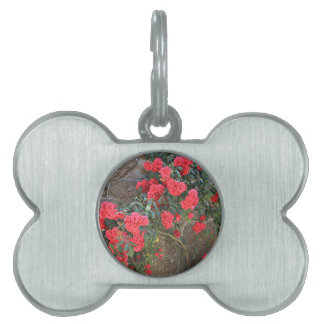 Red roses climbing on brick wall, Spain Pet ID Tag