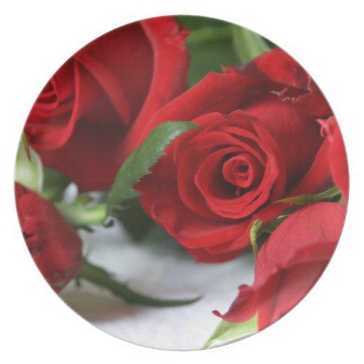 Red Roses Dinner Plate