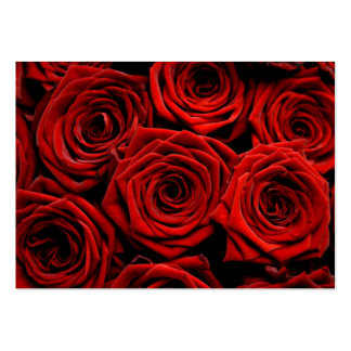 Red Roses Direction Cards Large Business Cards (Pack Of 100)