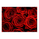 Red Roses Direction Cards Large Business Card