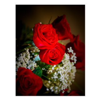 Red Roses for You Postcard