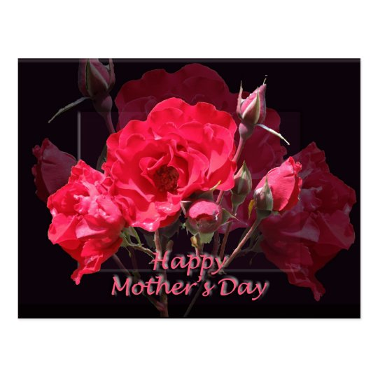 Red Roses Happy Mother's Day Postcard