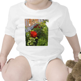 Red Roses In Castle Gardens Shirts