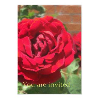 Red Roses in Cuautitlan Card