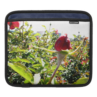 Red Roses In The Back iPad Sleeve
