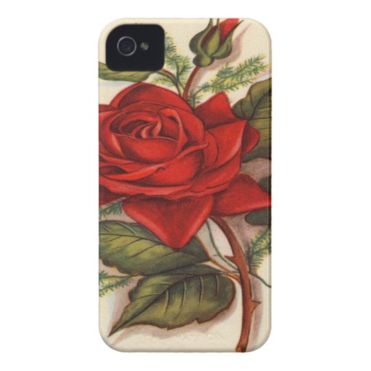 Red Roses iPhone 4 Case