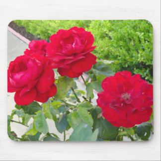 Red Roses Mouse Mat