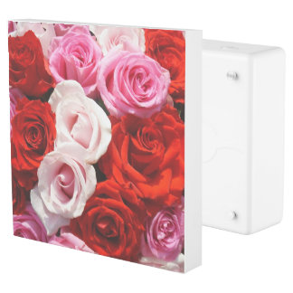 Red Roses Outlet Cover