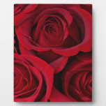 Red roses photo plaque