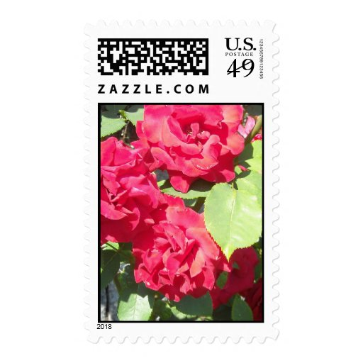 Red Roses Postage Stamp
