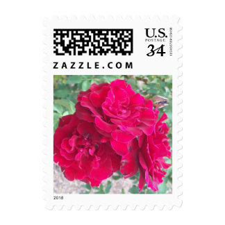 Red Roses Postage Stamps