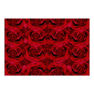 Red roses posters, prints, pictures, photos, poster