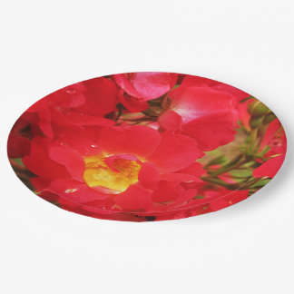 Red Roses-Raindrops-Paper Party Plates
